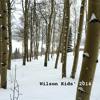 Elements - Lindsey Stirling (Brooke Wilson Cover)