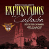 Banda Culiacancito ft. Ariel Camacho - El Toro Encartado Portada del disco
