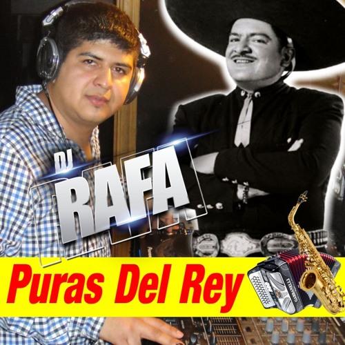 PURAS DEL REY NORTEÑAS ALVARO MONTES