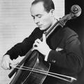 Dvorak: Cello Concerto (Feuermann/ NOA/ Barzin)