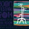 Skyfall live at Boom festival 2014