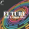 Man In The Mirror Demo 2 From Future Trap And Urban Vol 1 Mp3