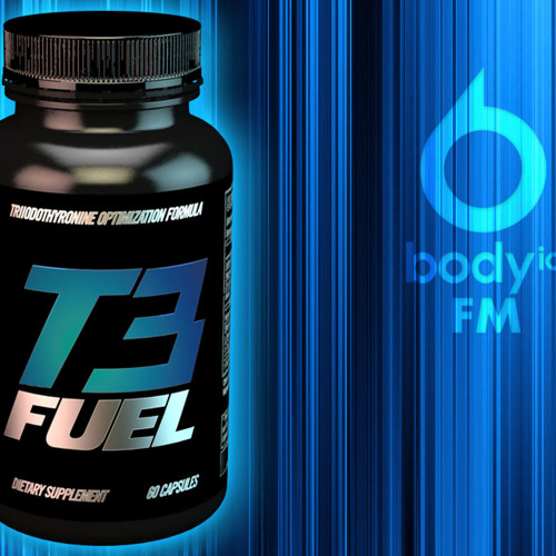 BIOFM 43 - T3 Fuel, Hypothyroidism and Metabolic Issues