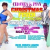 RICKY PLATINUM & STONE LOVE Live DECEMBER 2014