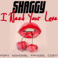 I Need Your Love - Shaggy feat. Faydee, Mohombi & Costi