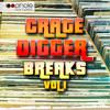 Crate Digger Breaks Vol 1 Sample Pack Demo