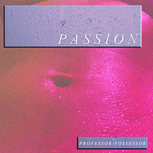 http://larecord.com/news/2015/02/17/new-track-professor-possessor-passion