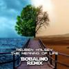 Reuben Halsey - Meaning Of Life (Bobalino Remix) Free Download