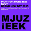Pray For More Feat. Eddy - Brand New Day  (Alex Ander Remix)