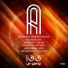 YYR100A : Alberto Santana - Genesis (Original Mix)