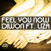 Diwon - Feel You Now ft. Liza ('Sans Drums') Portada del disco