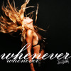 Shakira - Whenever, Wherever (Jay Silver Dubstep Remix)