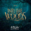 I Know Things Now - Into The Woods (Disney Cover)