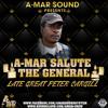 A-Mar Salute The General - Peter Cargill Tribute Mix