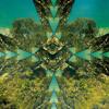 Meerkut - La Pampa (148_D .  Free Download).mp3