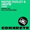 Wayne Dudley & AM2PM - Over (Dolly Rockers Remix)