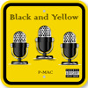 Black And Yellow (Remix)