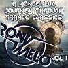 A Wonderful Journey Thru Trance Classics Vol. 1