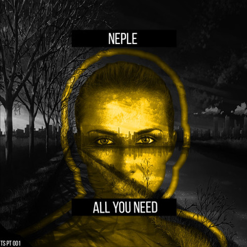 Neple - All You Need (Original Mix)