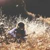 Das Gold Von Morgen - Alexa Feser (Cover)