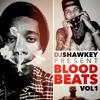 Dj Shaw-Key - Live - Blood Beats Vol 1 Hip-Hop/RnB Video Mix 12-01-2015