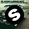 Dr. Kucho! & Gregor Salto - Can't Stop Playing (D-Stroyer Bootleg)