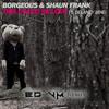 Borgeous & Shaun Frank ft. Delaney Jane - This Could Be Love (ED VM Remix)