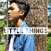 Little Things - One Diretion (Cover)