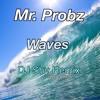 Mr. Probz - Waves DJ Shy House Remix