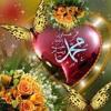 Habib Hasan – Salamullah.mp3