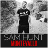 Take Your Time (Milk Party Rock Redrum) - Sam Hunt (Free Download)