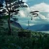 Bonobo x Danny Brown - All In Forms / Die Like A Rockstar (666swagyoloswag Edit)