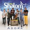 Banda  Shalom  104 Fm