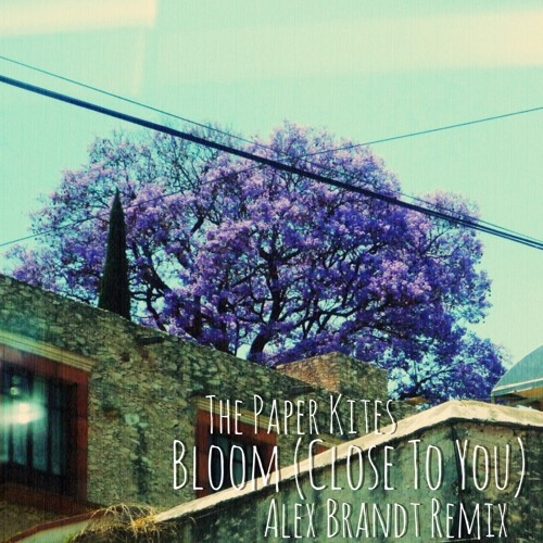 The Paper Kites - Bloom (Close To You) (Alex Brandt Remix) // free download