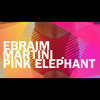 Ebraim Martini live at Pink Elephant / Vitoria-ES