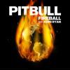 P.i.t.b.u.l.l - Fireballl - Eddier Moo (Dj Moost) Fusion Remix 2015