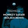 Premiere: Monkey Safari 'Cranes' (Kölsch remix) mp3