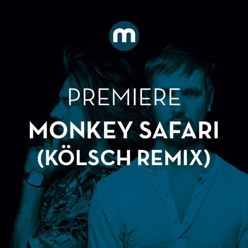 Premiere: Monkey Safari 'Cranes' (Kölsch remix)