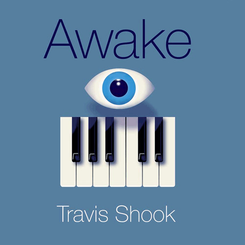 Travis Shook - Awake
