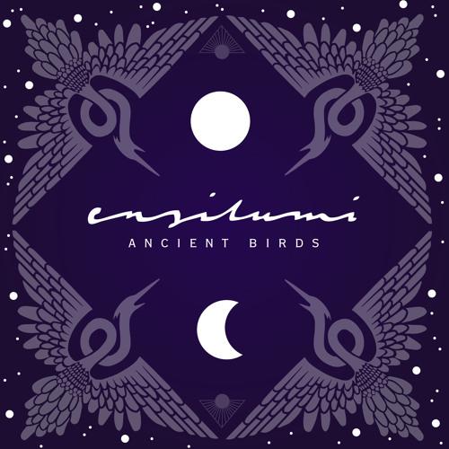 Ensilumi - Ancient Birds (Original Mix)