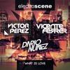 Dario Nuñez, Victor Perez & Vicente Ferrer - What Is Love Portada del disco