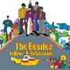Hey Bulldog (cover Beatles)