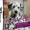 Nintendogs - Walking the Dog