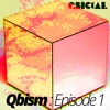 Qbism Episode 01 : January 2015