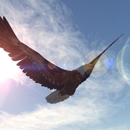 Free As The Eagle