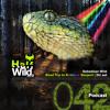 Road Trip to Rainbow Serpent Festival || Half Wild: Podcast // Episode 042