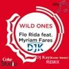 Miryam Fares Ft. FloRida & Sia - Wild Ones (DjK Club Remix)