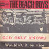 The Beach Boys - God Only Knows (Arran Coe remix)