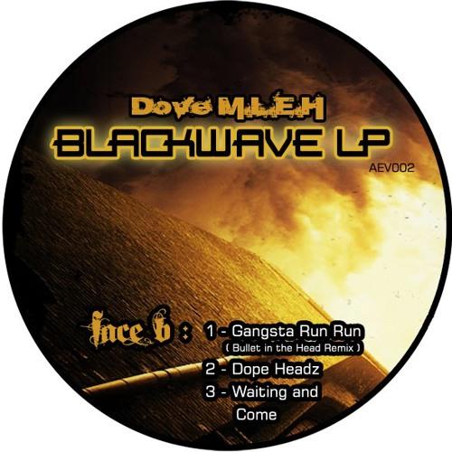 Dove M.L.E.H -  Waiting And Come (Dubstep BlackWave LP's version)