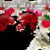 Download نحبك يارسول الله ـ ـ الشيخ خميس الزهراني Mp3